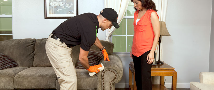 Halifax, PA carpet upholstery cleaning